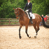 Dressage 10th June : Do not use without permission- Images can be cropped during the purchase process.